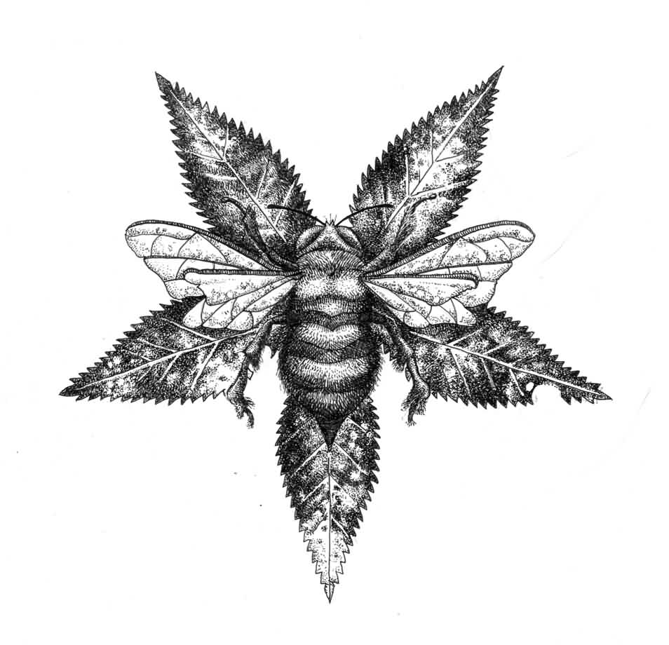 Bee And Star Leaf Tattoo Drawing