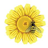 Bee On Yellow Flower Tattoo Design