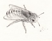 Bee Tattoo Drawing