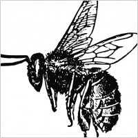 Black And White Bee Tattoo Design