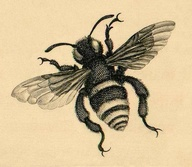 Grey And Black Bee Tattoo Print