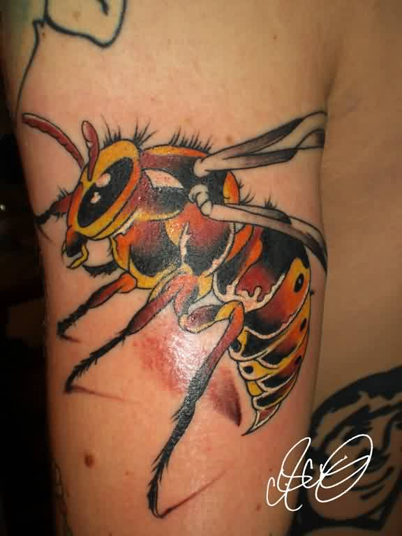 Latest 3D Bee Tattoo On Arm For Men
