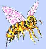 Pink Winged Bee Tattoo Design