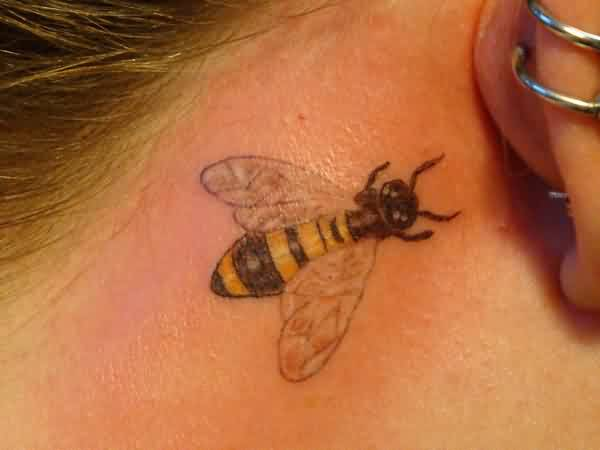 Pretty Bee Tattoo On Back Ear For Women