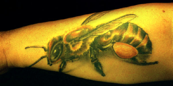Real Looking Bee Tattoo On Arm