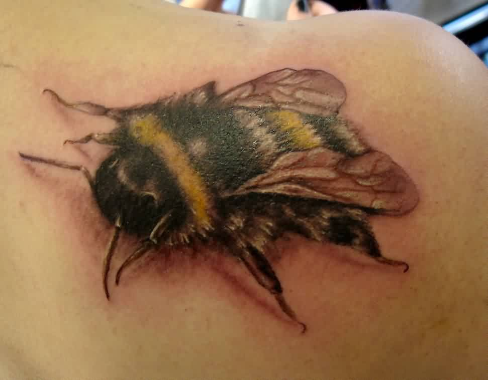 Realistic Black And Yellow Bee Tattoo On Back Of Shoulder