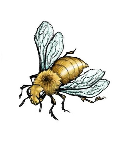 The Latest Bee Tattoo Design