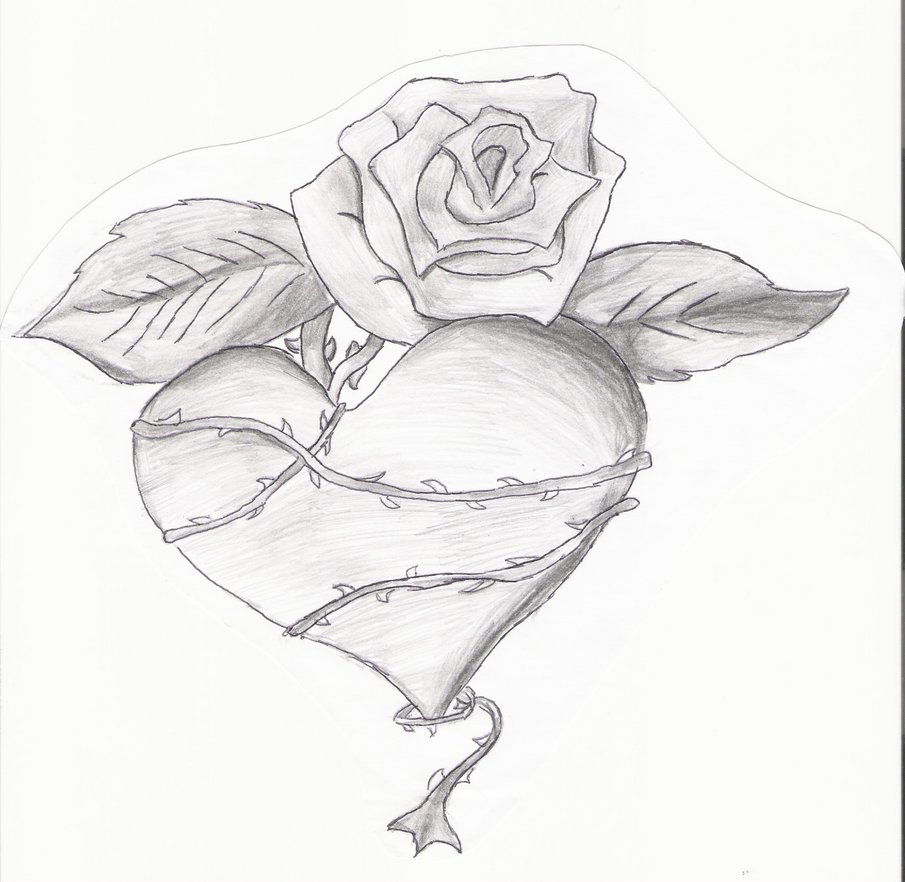 rose heart banner tattoo sketch tattooshunter com