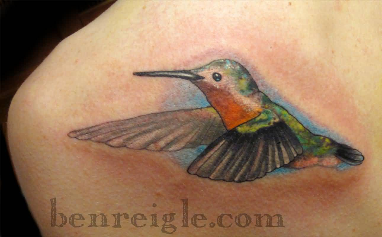 Hummingbird Tattoo Ideas and Hummingbird Tattoo Designs ...