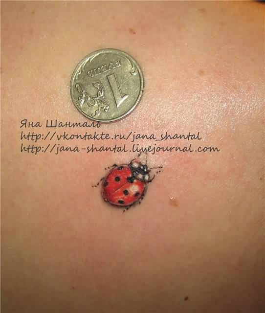 Ladybug Tattoos Designs Ideas And Meaning: Ladybug Tattoo Ideas And Ladybug Tattoo Designs