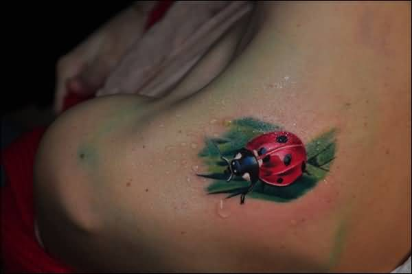 Best One Ladybug Tattoo On Back