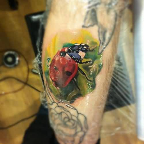 Carved New Ladybug Tattoo On Leg
