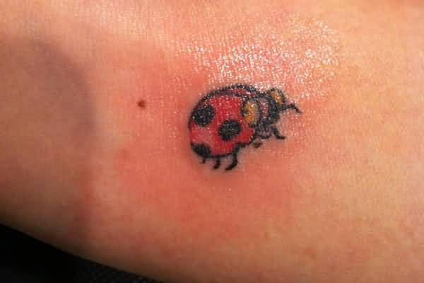 Carved New One Ladybug Tattoo