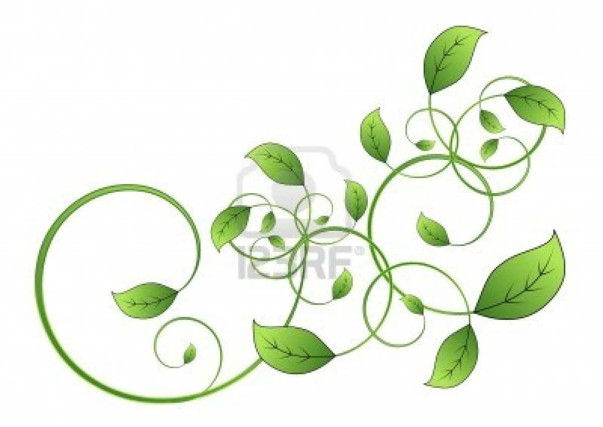 Vine Designs Art : On back celtic leaf vine tattoo right side