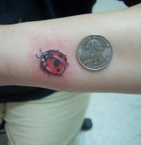 Coin With Ladybug Tattoo Design On Forearm