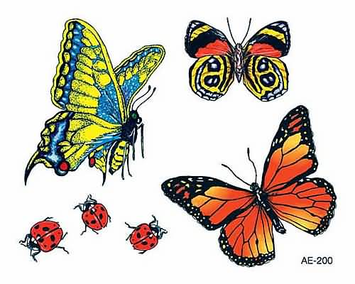 Different Butterfly And Ladybug Tattoo Design