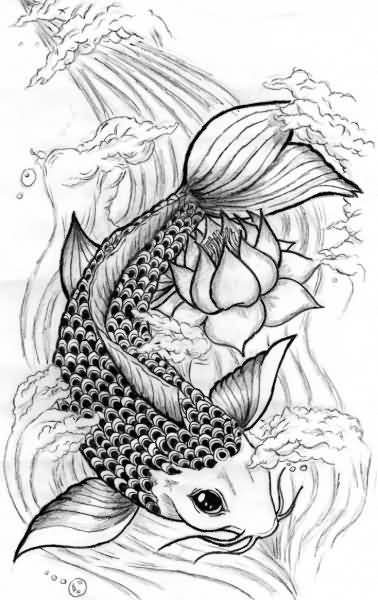 Gallery For gt Koi Fish Drawings Designs