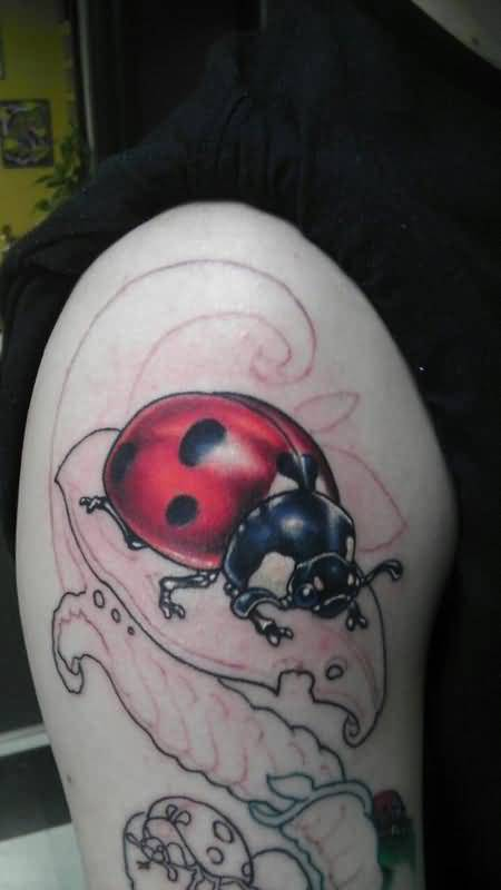 Fantastic Ladybug Tattoo On Bicep Beautiful