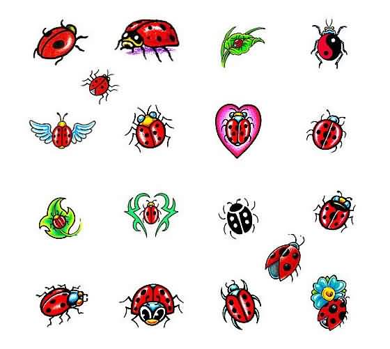 Great Collection Of Ladybug Tattoo Design