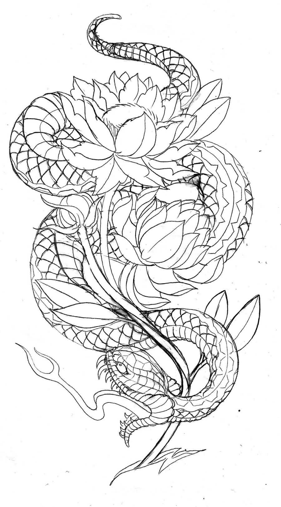 Japanese Dragon Outline Fantastice Tattoo Graphic Design
