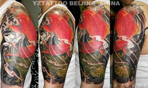 On back dragon koi fish for sale for Dragon koi for sale
