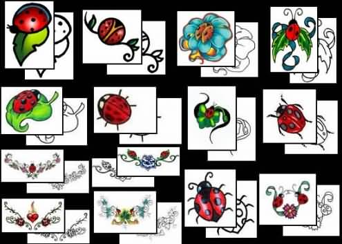 Ladybug Tattoo Design Gallery Awesome