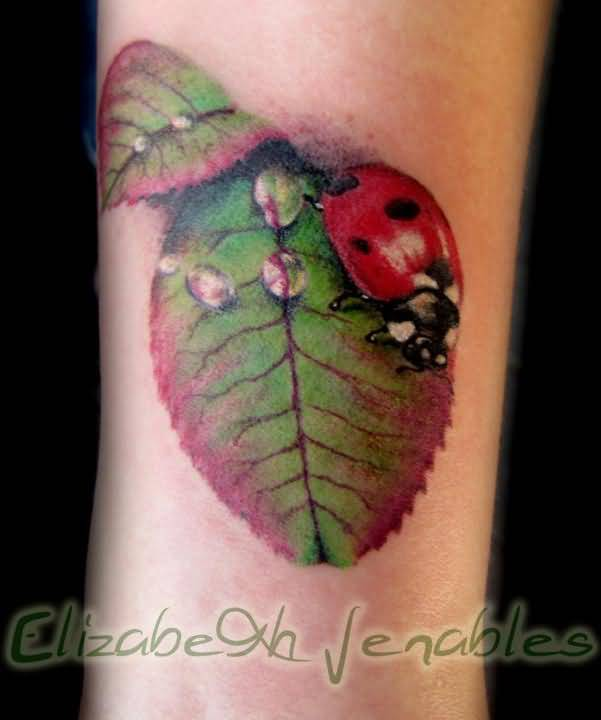 Leaf Ladybug Tattoo On Leg