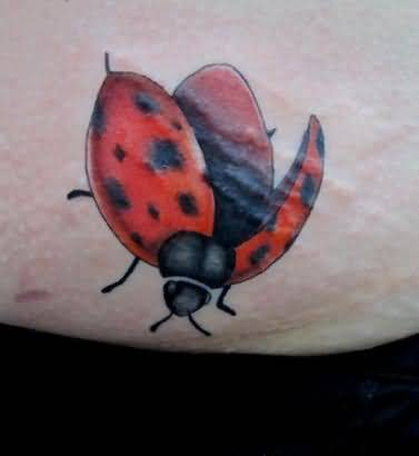 On Fly Ladyug Tattoo