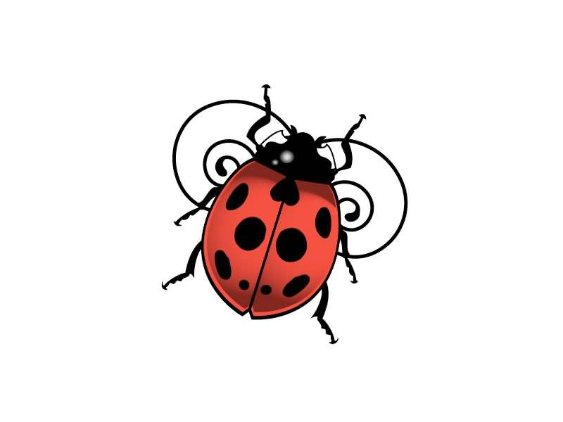 Perfect Ladybug Tattoo Design Incredible