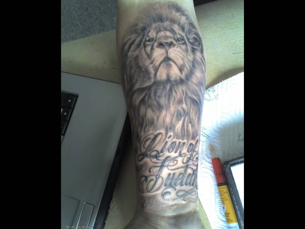 Best lion tattoo for perfect men for Best lion tattoos