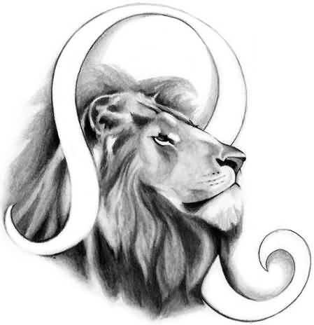 Image Gallery leo lion drawing