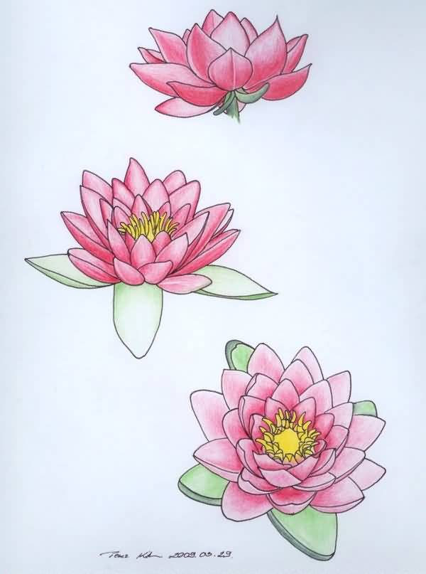 Mind Blowing Pink Water Lily Tattoo