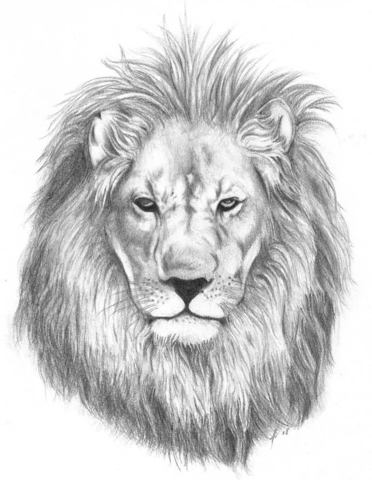 Simple lion tattoo design on paper for Lion head tattoo
