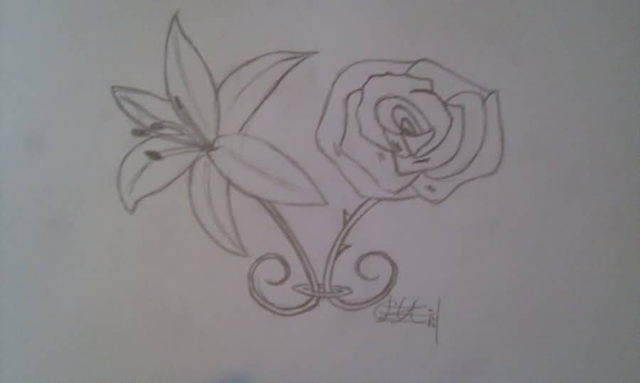 Lily tattoo ideas and lily tattoo designs page 79 for Lily rose designer