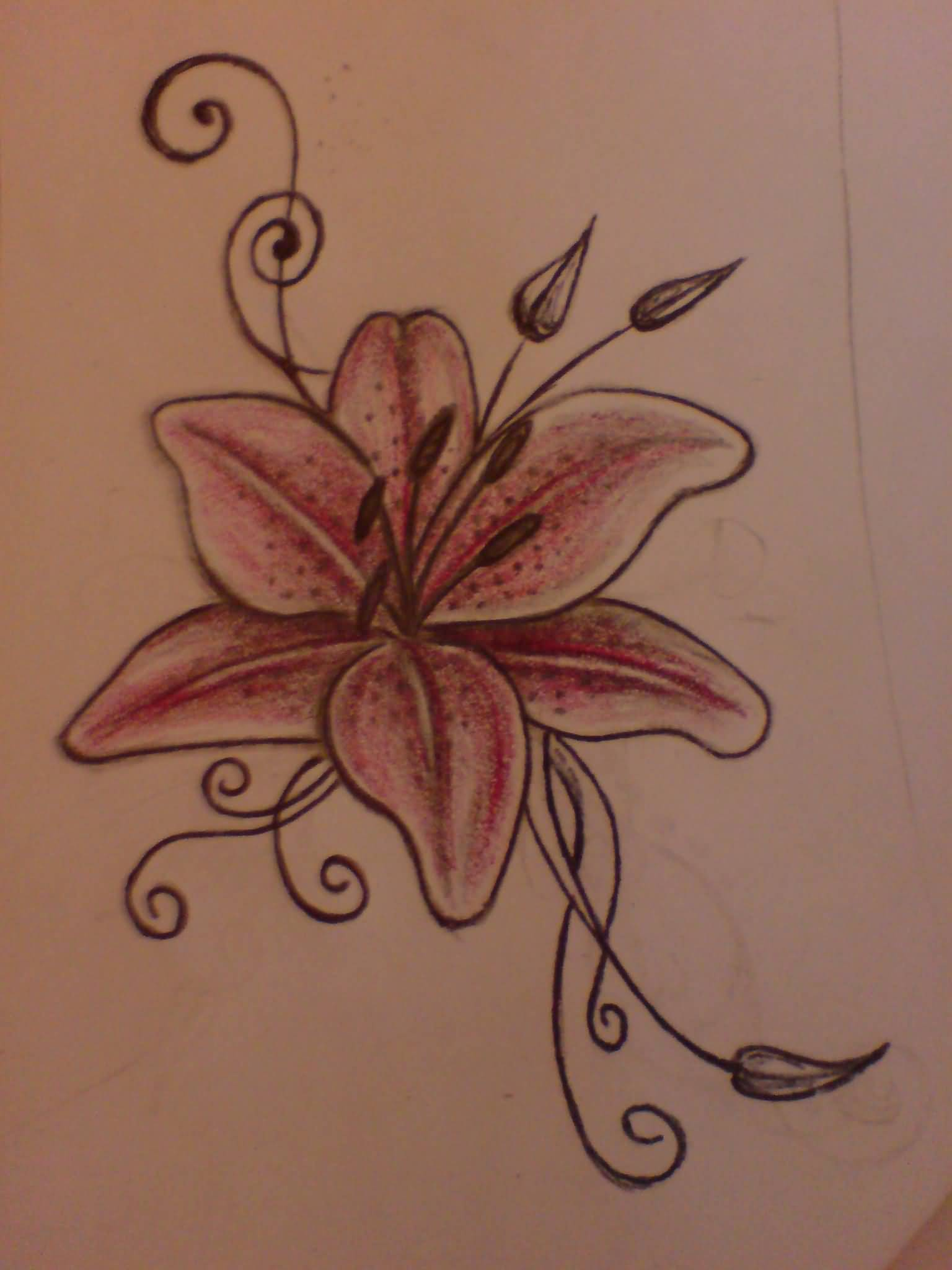 Unique lily flower tattoo designs tattooshunter related tattoo designs unique lily flower tattoo izmirmasajfo Image collections