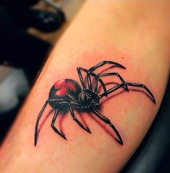 3d spider tattoo ideas and 3d spider tattoo designs page 6. Black Bedroom Furniture Sets. Home Design Ideas