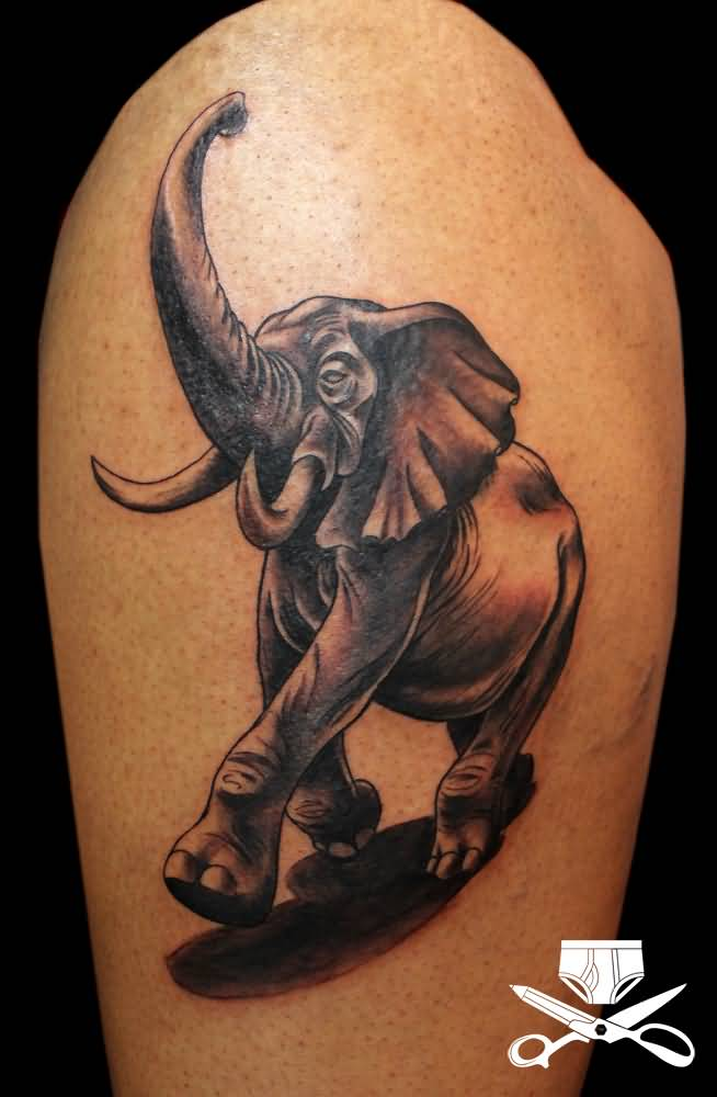 Latest African Elephant Scrowling Tattoo On Sleeve