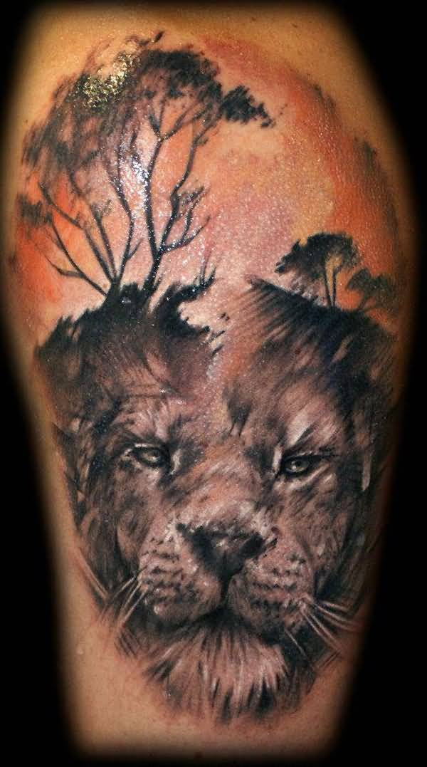 african lion tattoo ideas and african lion tattoo designs. Black Bedroom Furniture Sets. Home Design Ideas