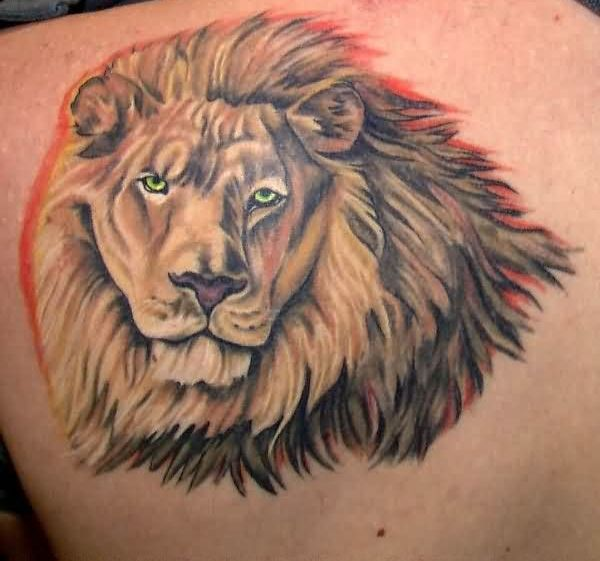 Outstanding African Lion Tattoo For Men's Back