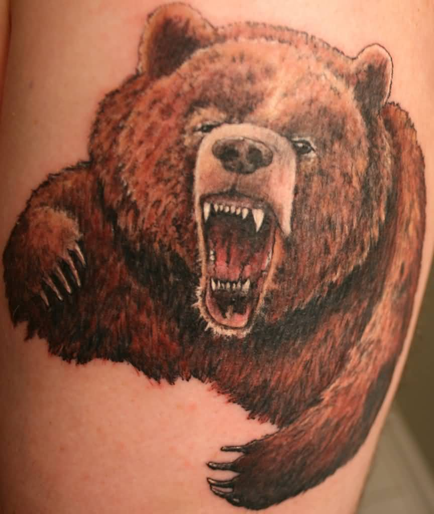 grizzly bear tattoo ideas and grizzly bear tattoo designs page 7. Black Bedroom Furniture Sets. Home Design Ideas