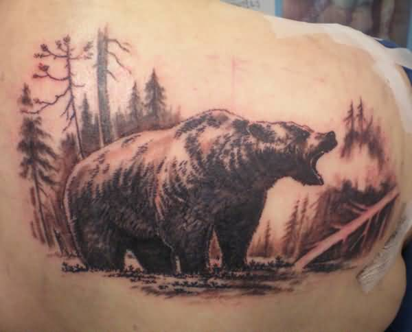 Another Best Roaring Grizzly Bear Tattoo On Back Shoulder