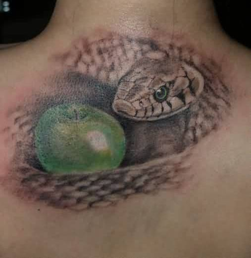Apple And Snake Tattoo