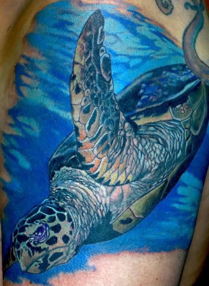 Fantastic Aqua Turtle Tattoo On Sleeve