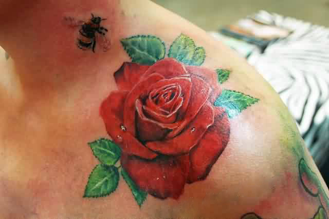 Brilliant Bee And Red Rose Flower Tattoo On Collarbone7