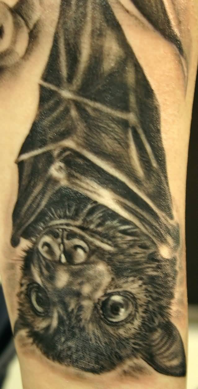 Unique Bat Tattoo Hanging On Tree