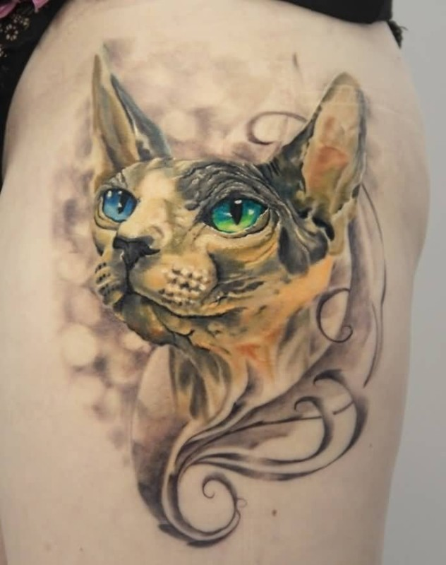 Brilliant Cat Face Tattoo Design Make On Thigh 6