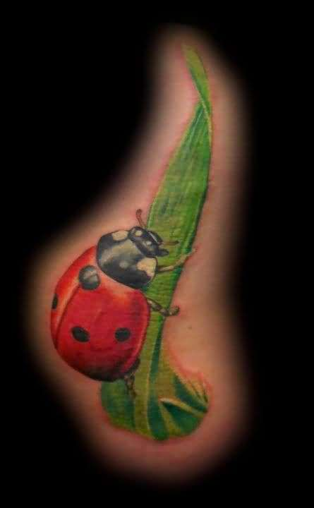 Great Looking Lady Bug And Leaf Tattoo Design    1