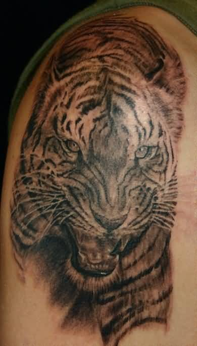 Awesome Angry Tiger Animal Tattoo For Bicep