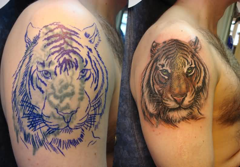 Men Show Dangerous Tiger Tattoo On Bicep