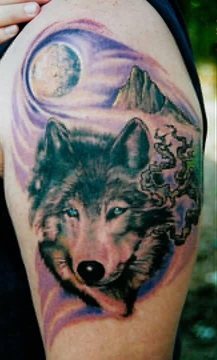 tattoo of aggressive wolf sitting on bicep. Black Bedroom Furniture Sets. Home Design Ideas